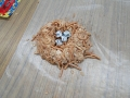 edible-bird-nest